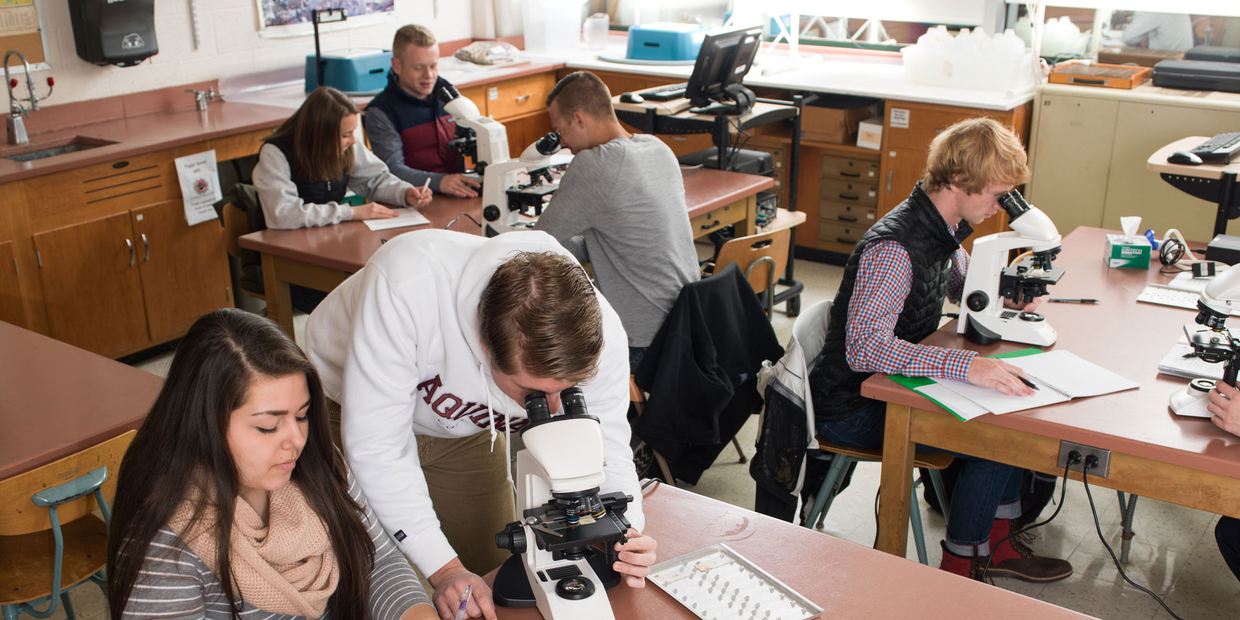 students doing science in a classroom