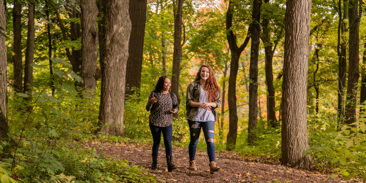 students walking through woods