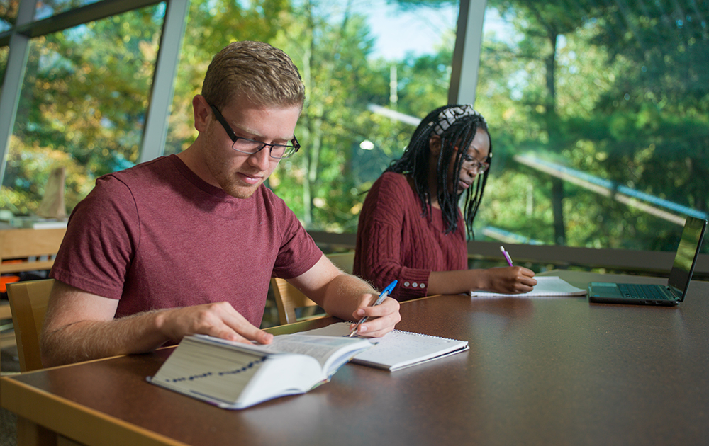 Two students studying in the library