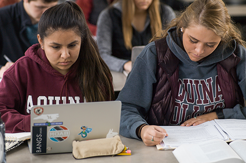 two students sitting together on laptops wriiting
